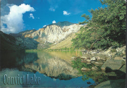 Convict Lake Afternoon Postcard-QTY=50
