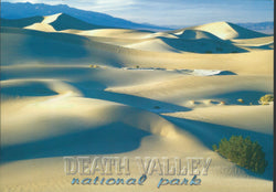 Death Valley National Park Postcard-QTY=50