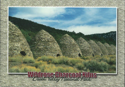 Death Valley Charcoal Kilns Postcard-QTY=50