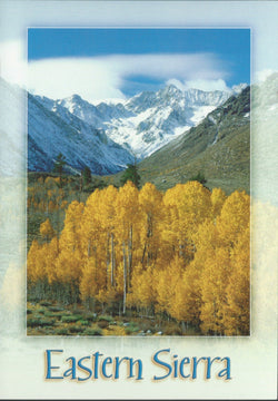 Eastern Sierra Fall Postcard-QTY=50