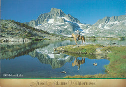 Ansel Adams Wilderness Eastern Sierra Postcard