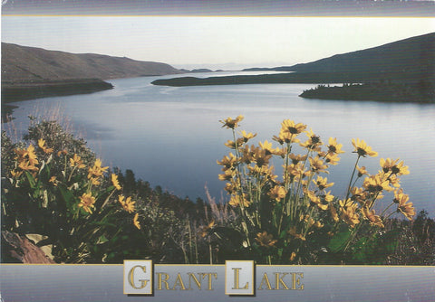 June Lake Grant Lake Postcard-QTY=50