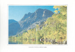 Autumn Colors Silver Lake Postcard