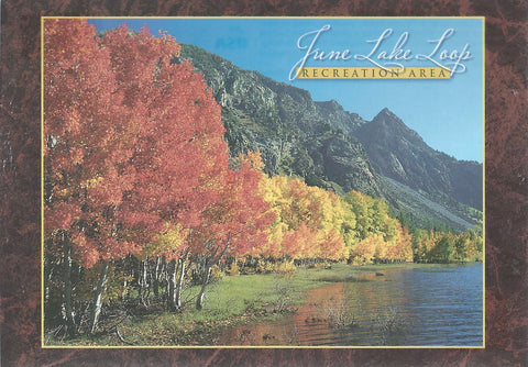 June Lake Recreation Area Postcard-QTY=50
