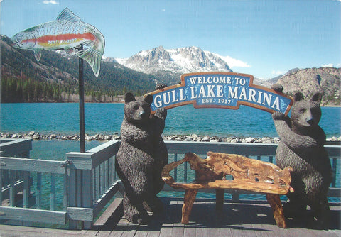 Gull Lake Bears Postcard-QTY=50