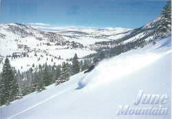 June Mountain Downhill Skiing Postcard