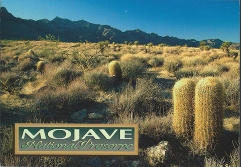 Mojave National Preserve Postcard-QTY=50