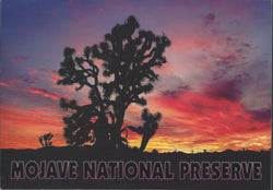 Mojave Sunset Postcard-QTY=50