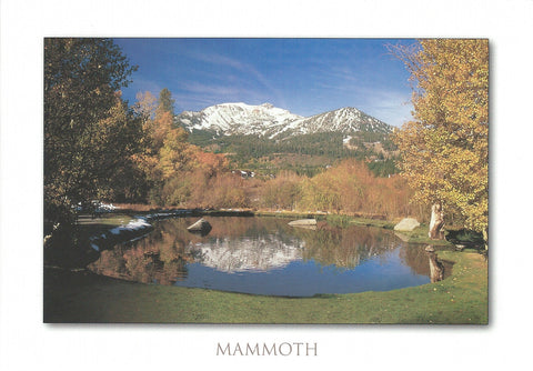 Mammoth Lakes Pond Postcard-QTY=50