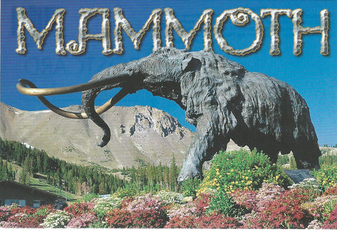 Mammoth Statue Postcard-QTY=50