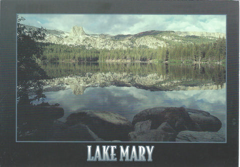 Lake Mary Black Postcard-QTY=50