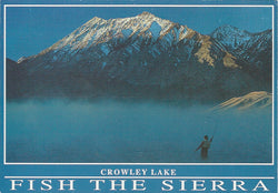 Fish The Sierra Mammoth Lakes Alternative Postcard-QTY=50
