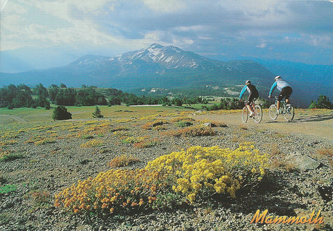 Mammoth Lakes Bikers Postcard-QTY=50