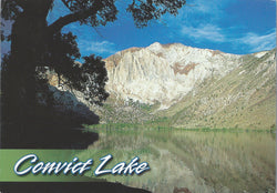 Convict Lake Mammoth Mountain Postcard