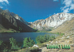 Crowley Lake Fishing Postcard-QTY=50