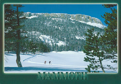 Mammoth Cross Country Skiing Winter Postcard