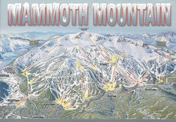 Mammoth Mountain Ski Trail Postcard