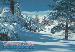 Mammoth Lakes Winter Snow Postcard