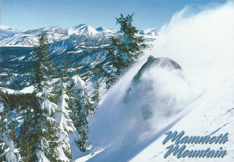 Mammoth Winter Snowboarder -QTY=50