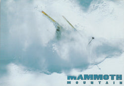 Mammoth Wipeout Postcard