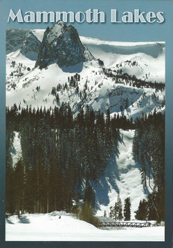 Mammoth Lakes Ski Trail Postcard