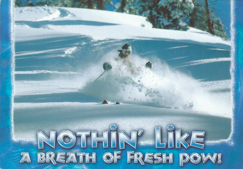 Fresh Powder Postcard-QTY=50