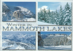 Mammoth Lakes Winter Collage Postcard