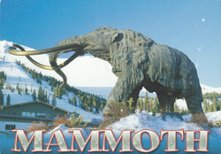 Woolly Mammoth Winter Statue Postcard-QTY=50