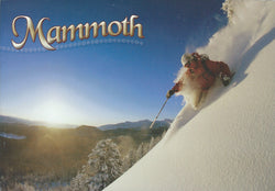 Mammoth Mountain Powder Postcard