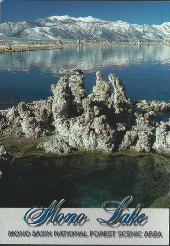 Mono Lake Winter Postcard-QTY=50
