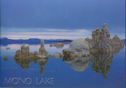 Mono Lake Tufa View Postcard