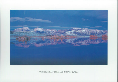 Mono Lake Winter Sunrise Postcard-QTY=50
