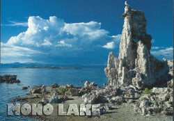 Mono Lake Afternoon Postcard
