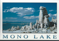 Mono Lake Tufas Postcard