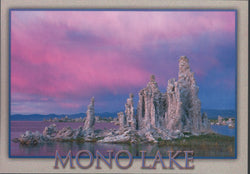 Mono Lake Tufa Postcard