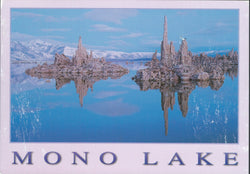 Calm Mono Lake Postcard