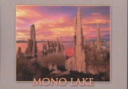 Mono Lake Red Sky Postcard