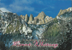 Mt. Whitney Elevation Postcard-QTY=50