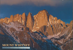 Mt. Whitney Sequoia National Park Postcard-QTY=50