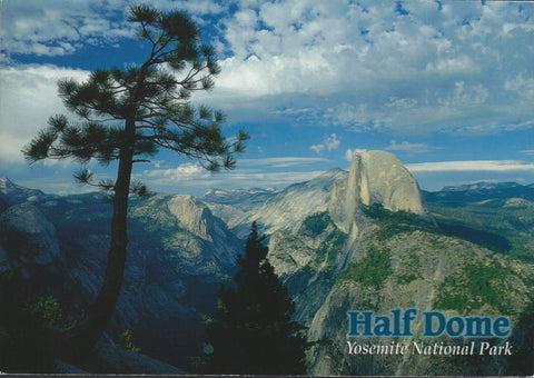 Yosemite Half Dome Postcard-QTY=50