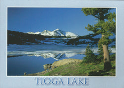 Tioga Lake Postcard-QTY=50