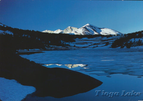 Frozen Tioga Lake Postcard-QTY=50