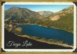 Tioga Lake Aerial Postcard-QTY=50