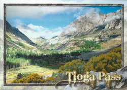 Tioga Pass Postcard-QTY=50