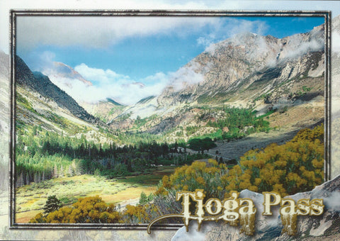 Tioga Pass Postcard