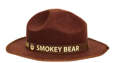 Smokey Ranger Hat