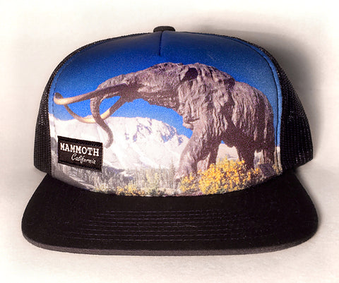 Mammoth California Statue Photo Hat