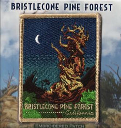 Bristlecone Patch