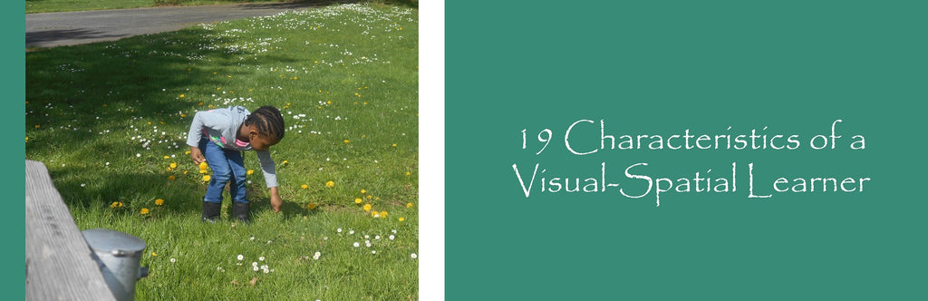 19 Characteristics of a Visual-Spatial Learner