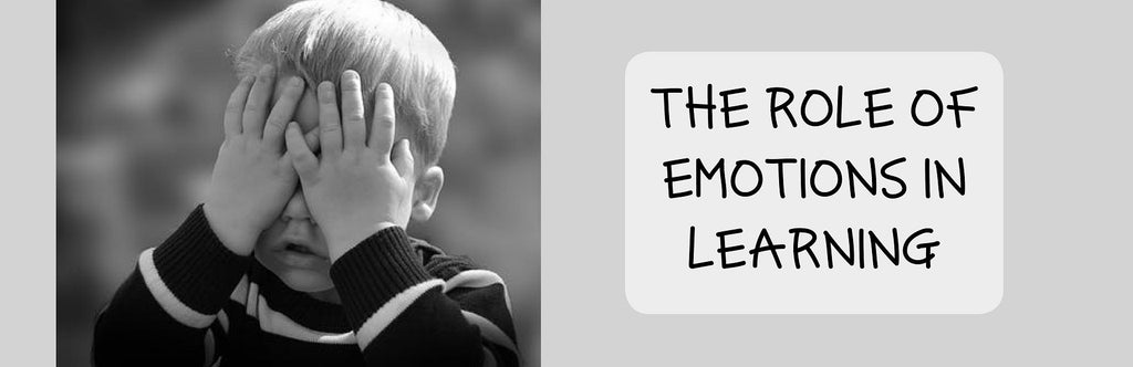 The Role of Emotions in Learning